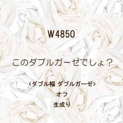 W4850 W巾ガーゼ ダブルガーゼ SALE1